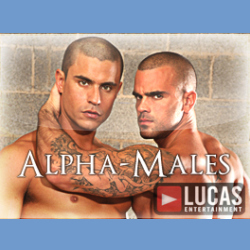 Alpha Males - Now with 20 videos