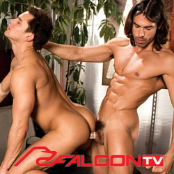 "Since 1971 Falcon has been a<br>gay icon. Now with 604 videos.<br>Get access to Falcon TV and all<br>content apps.<a href=""http://www.tylersroom.net/join.html""target=""_blank""><font color=""red""> Join Today! </font></a>"