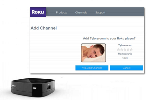 what is roku and do i need it